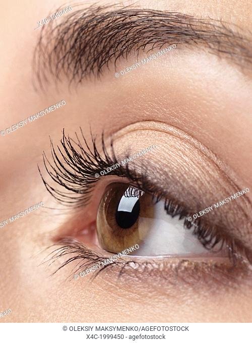 Closeup photo of woman eye with brown iris and long eyelashes