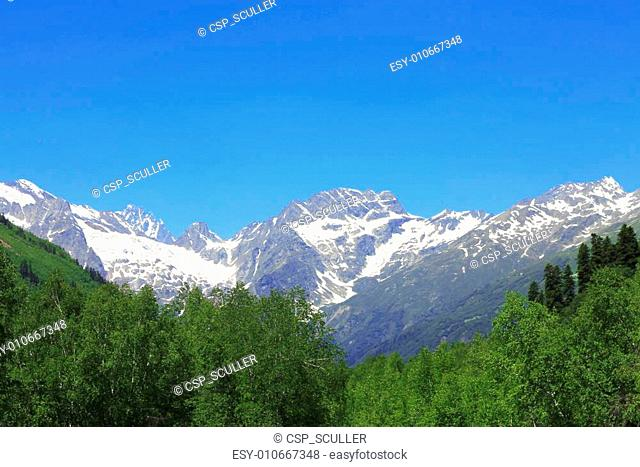 Snowy caucasus mountains and green forest under