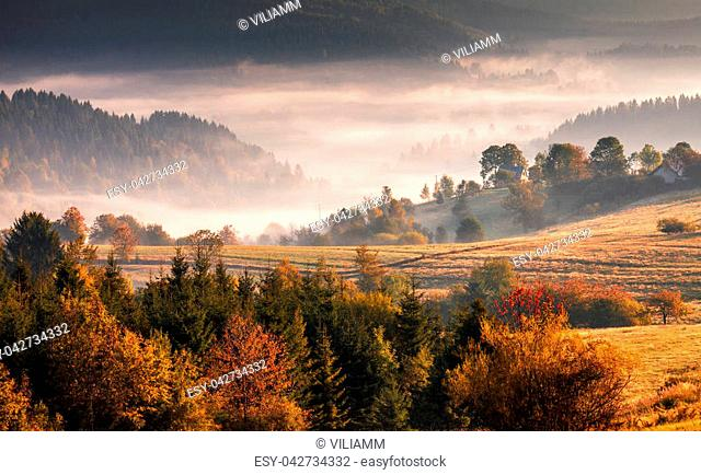 Autumn landscape, misty morning in the region of Kysuce, Slovakia, Europe