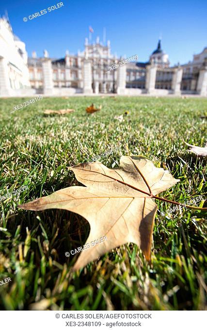 Spain, Madrid Province, Aranjuez, Royal Palace, fallen leaf