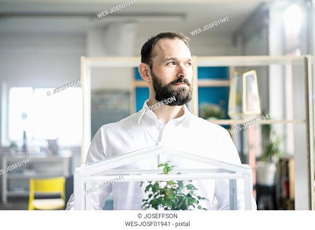 Businessman with bonsai tree in office