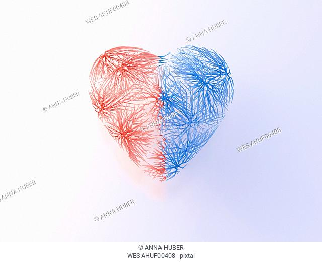 Heart with red and blue veins