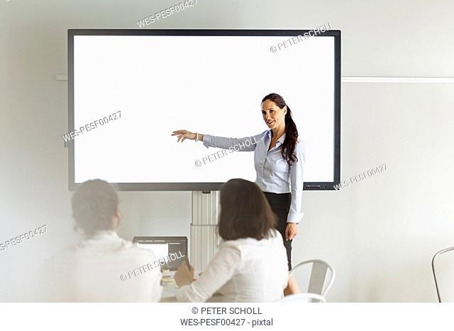 Businesswoman leading a presentation