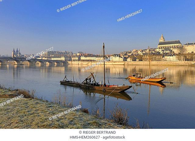France, Loir et Cher, Blois, Loire river banks