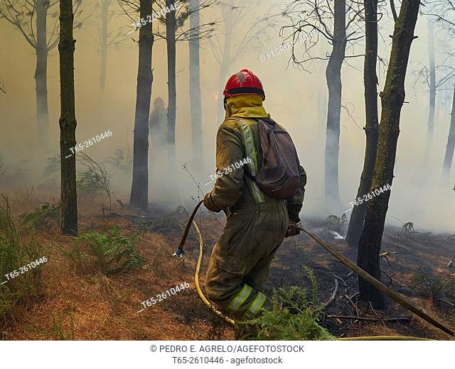 Ground crews working to put out a forest fire. Province of Lugo, Galicia, Spain (July 2015)