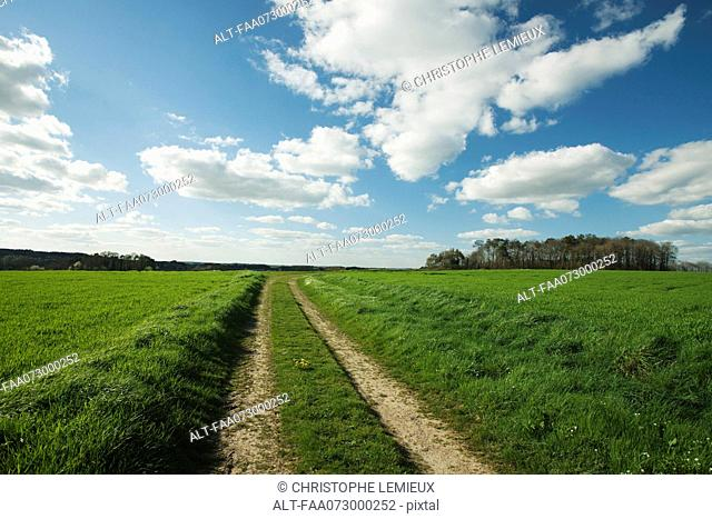 Dirt road through countryside, Guilliers, Brittany, France