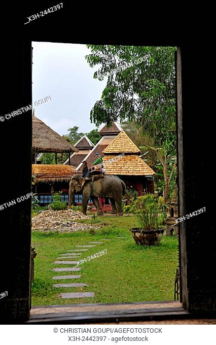 Elephant Village, Ban Xieng Lom village, near Luang Prabang, Laos, Southeast Asia
