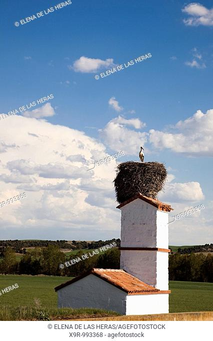 Stork nest at the top of a house. Burgos. Spain