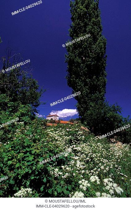 Oxia village, vegetation, Lake of Prespes, Macedonia Central, Greece