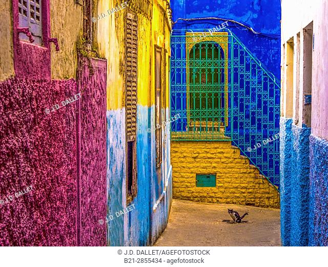 """Morocco, Tangier, in the """"Medina"""" (old part) of Tangier"""