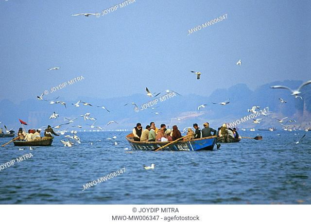 Boats taking pilgrims to the Sangam, or the confluence It is a common practice for the pilgrims to feed birds as part of their spiritual duty The seagulls are...