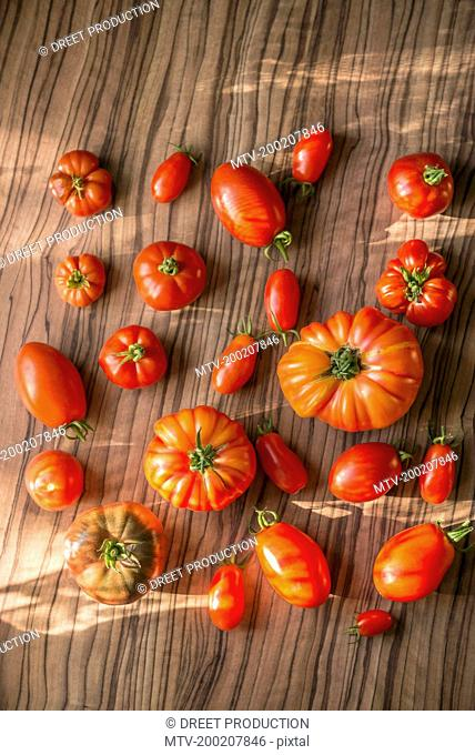 Directly above shot of variety of tomatoes on table, Munich, Bavaria, Germany