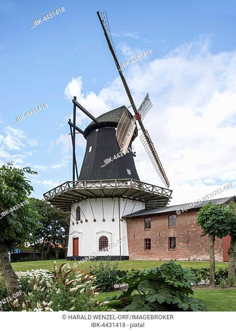 Højer Mølle, historic Dutch windmill with Sønderjylland Museum, Højer, Jutland, Southern Denmark, Denmark