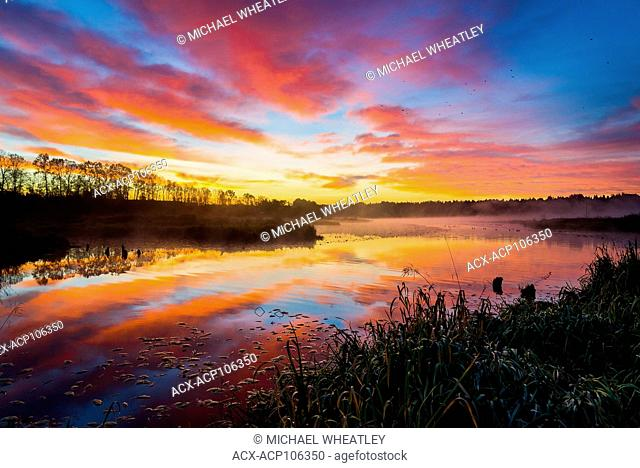 Sunrise, Still Creek, Burnaby Lake Regional Park, Burnaby, British Columbia, Canada