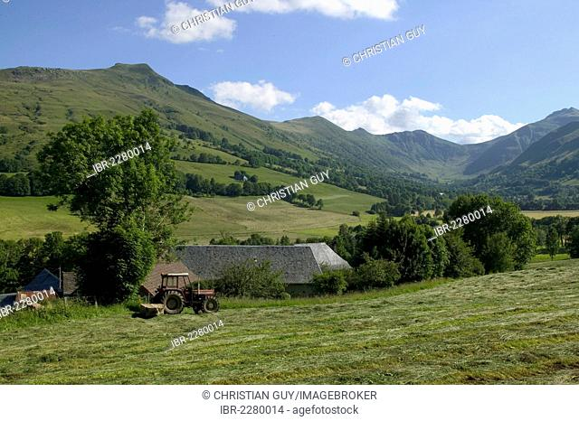 Impradine Valley and Puy Mary mountain, Cantal mounts, Parc Naturel Regional des Volcans d'Auvergne, Auvergne Volcanoes Regional Nature Park, Cantal, France