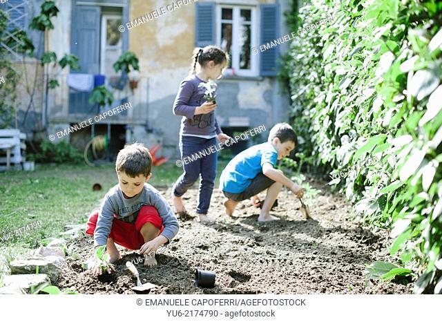 children prepare vegetable garden