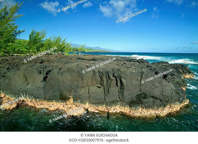 Pointe Coarail, Reunion Island