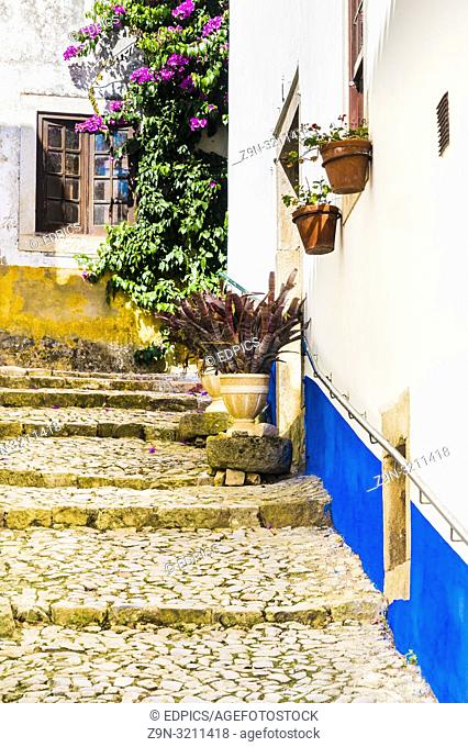 paved cobblestone staircase with flowerpots, obidos, portugal