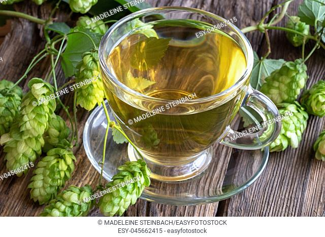 A cup of herbal tea with fresh wild hops on a rustic background