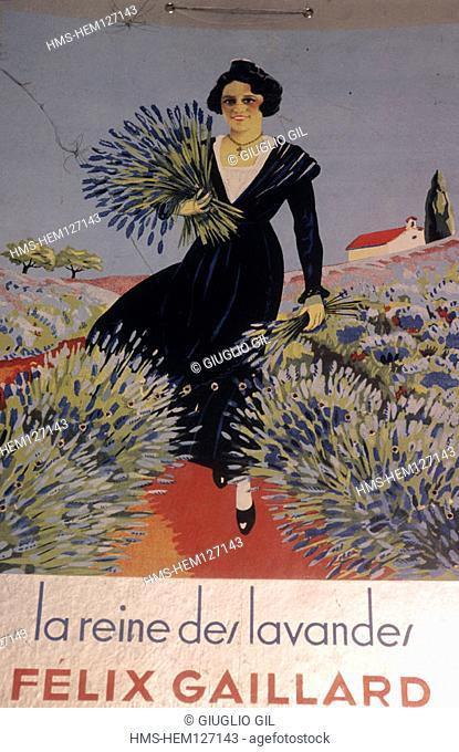 France, Vaucluse (84), Sault village, old poster of lavender