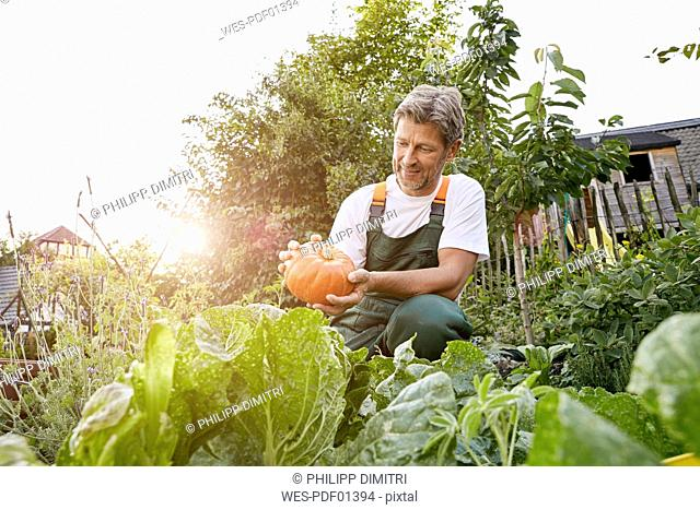 Mature man standing in his garden wearing apron