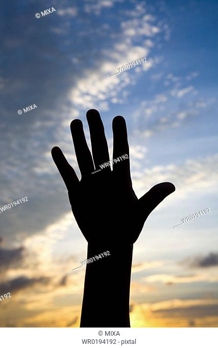 Woman's hand reaching for sky