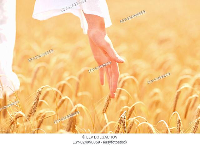 country, nature, summer holidays, agriculture and people concept - close up of young woman hand touching spikelets in cereal field