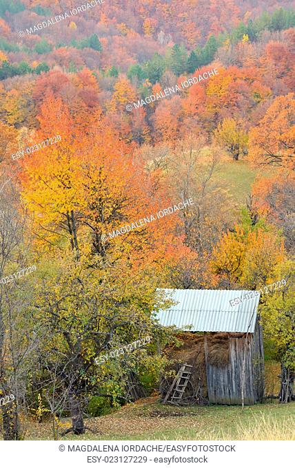 Country barn during fall foliage