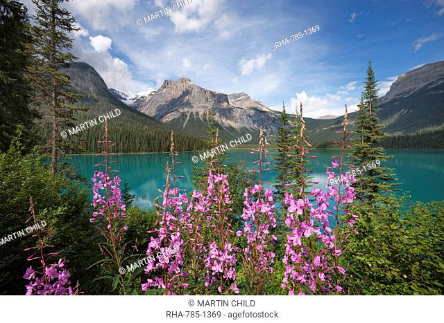 Emerald Lake, Yoho National Park, UNESCO World Heritage Site, British Columbia, Rocky Mountains, Canada, North America