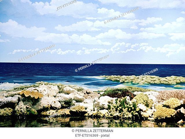 A blue ocean, Australia