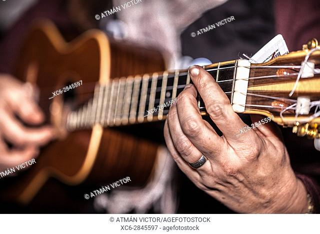 woman playing the ukelele