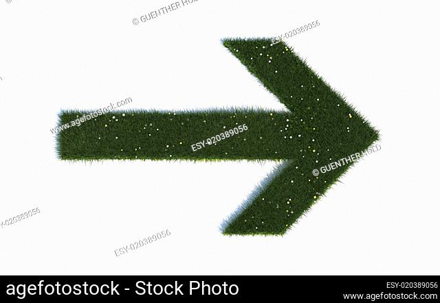 Direction arrow right: Series symbols out of realistic grass