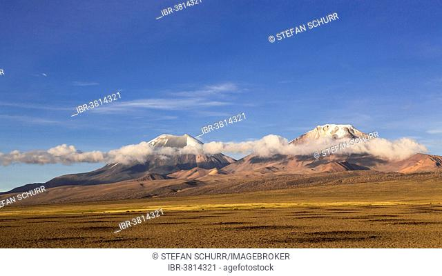 Landscape in the Sajama National Park, Altiplano Highlands, Bolivia