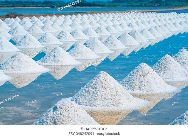 Heap of sea salt in original salt produce farm make from natural ocean salty water preparing for last process before sent it to industry consumer