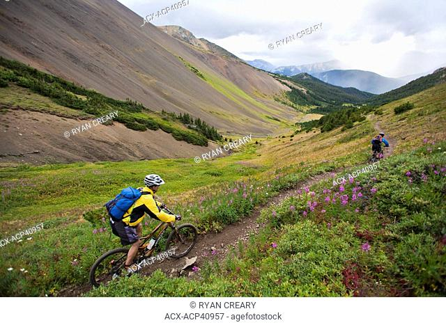 A male and female mountain biker descend the perfect singletrack trails of Spruce Lake Protected Area, Southern Chilcotins, British Columbia, Canada