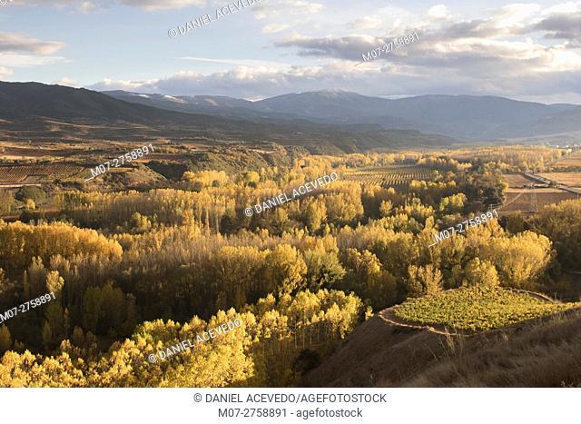 Najerilla autumn lanscape, La Rioja wine region, Spain, Europe