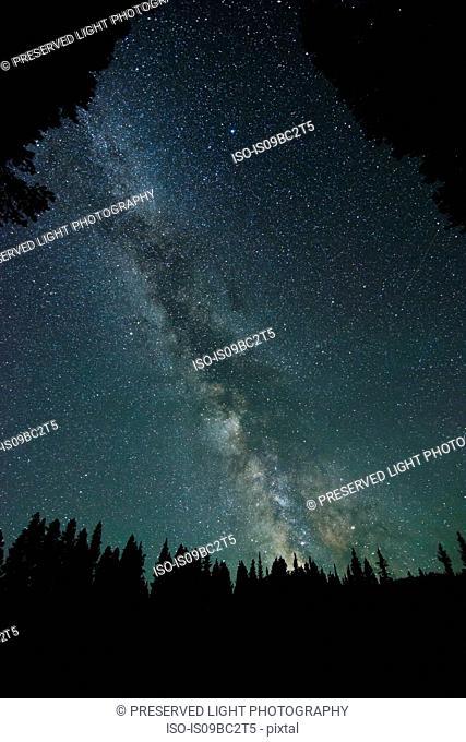 Milky Way Galaxy, Nickel Plate Provincial Park, Penticon, British Columbia, Canada