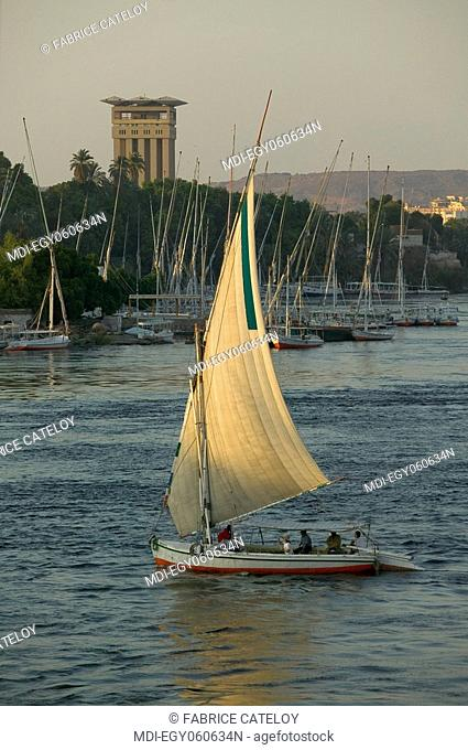 Felouque on the Nile in the sunset - In the background the Elephantine Island and the Aswan Oberoi Hotel