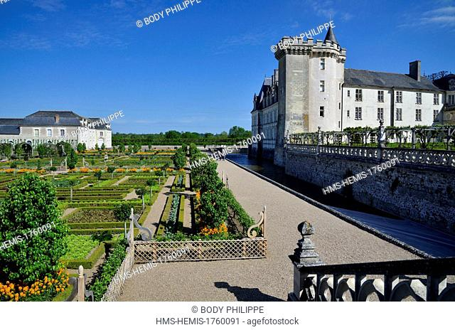 France, Indre et Loire, Loire Valley listed as World Heritage by UNESCO, Chateau de Villandry, property of Henri and Angelique Carvallo