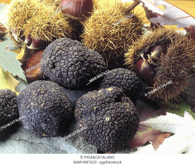 black truffles, funguses and chestnuts