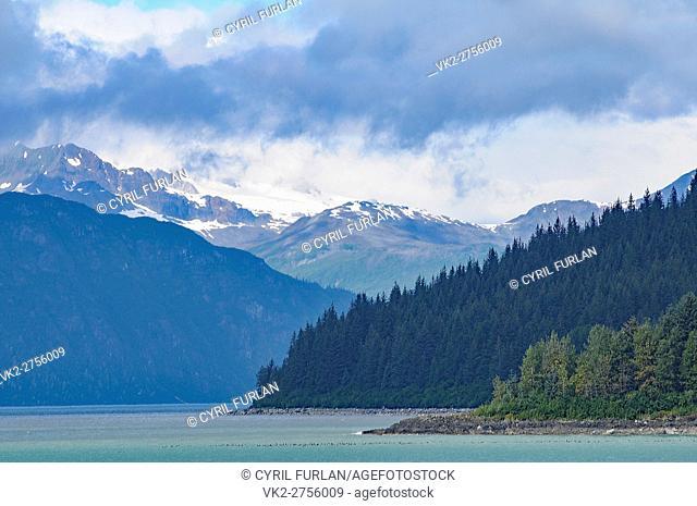 Looking Down into Glacier Bay Alaska