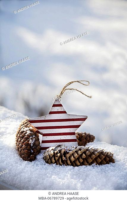 Christmas pendant in the snow, still life