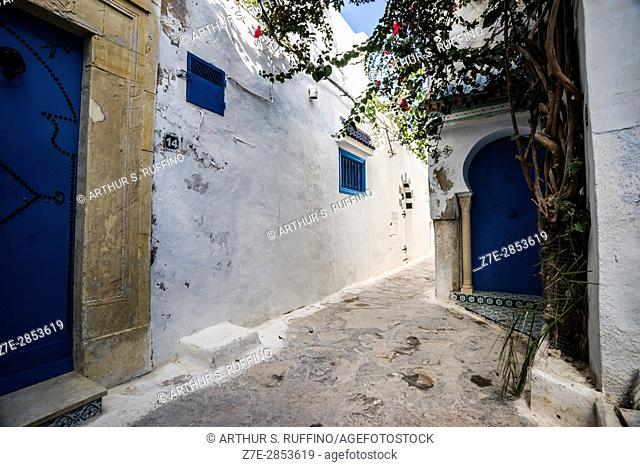 The narrow, labyrinthine streets of the Hammamet Medina in the Old Fort, Nabeul Governorate, Tunisia