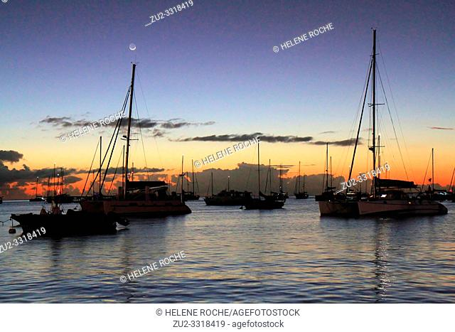 Sailing boats in Deshaies harbor at sunset, Guadeloupe, Basse-Terre, Caribbean islands, France