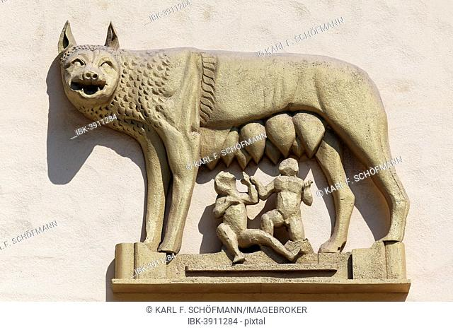 Roman she-wolf suckling Romulus and Remus, relief on a house wall, Bagheria, Province of Palermo, Sicily, Italy