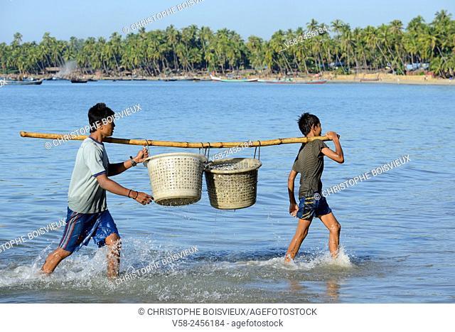 Myanmar, Rakhine State, Ngapali surroundings, Lon Tha beach, Fishermen unloading fish
