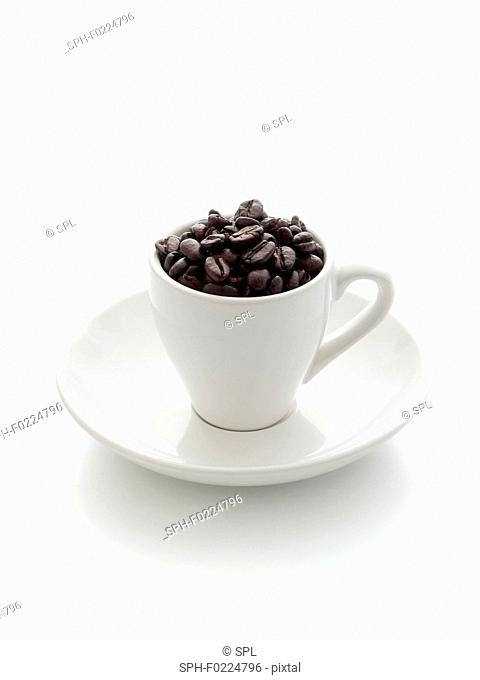 Coffee cup filled with beans