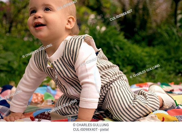 Toddler boy on picnic blanket