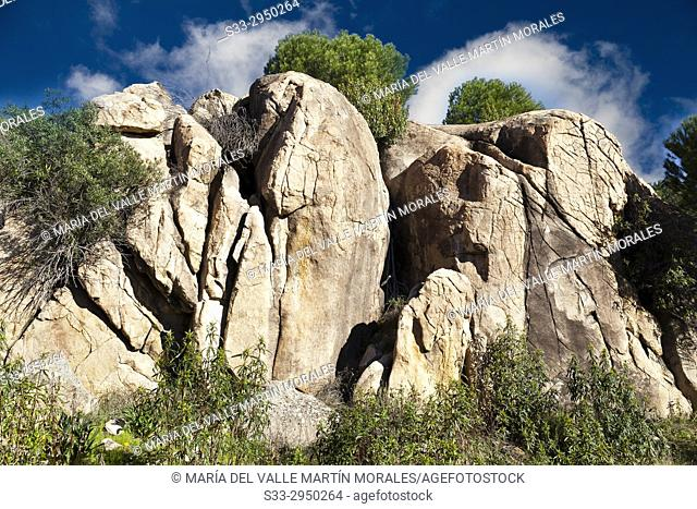 Granite in Alcornocoso hill. Madrid. Spain