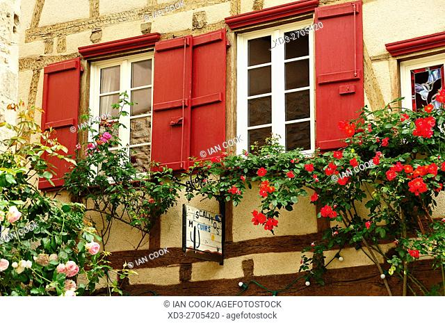 classic French windows with roses, Saint-Antonin-Noble-Val, Tarn-et-Garonne Department, Midi-Pyrenees, France